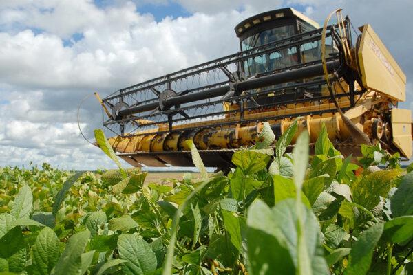 Governador Mauro Carlesse abre oficialmente colheita da safra 2020/2021 nesta segunda-feira, 8