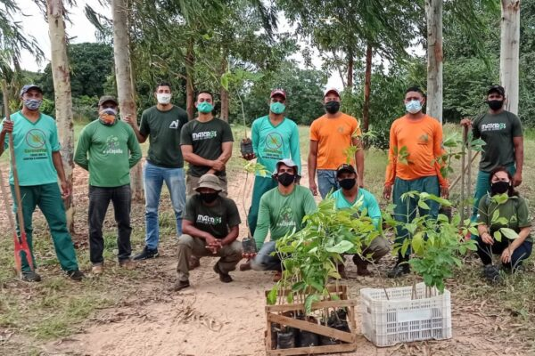 MATEIROS: Naturatins realiza plantio de novas mudas em propriedade rural em parceria com Instituto Pé de Copaíba